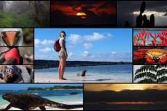 Galapagos-Kleingruppe